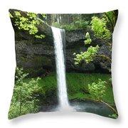 Silver Falls 1 Throw Pillow