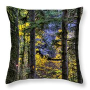 Silver Falls State Park Oregon 2 Throw Pillow