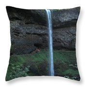 Silver Falls Throw Pillow