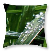 Silver For The Fae Throw Pillow