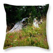 Silver Forest Meadow Throw Pillow by Christine Burdine