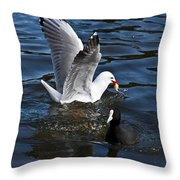 Silver Gull And Australian Coot Throw Pillow