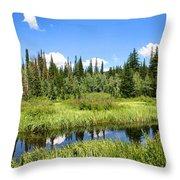Silver Lake Throw Pillow