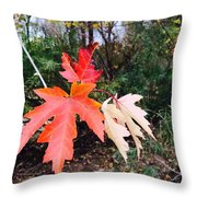 Silver Maple In Red Throw Pillow