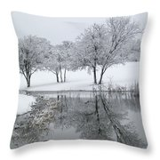Silver Morn Throw Pillow