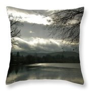 Silver River Throw Pillow