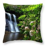 Silver Run Falls Mountain Laurel Throw Pillow