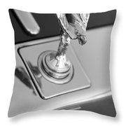 Silver Seraph Throw Pillow