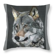 Silver Shadow Throw Pillow