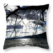 Silver Sunset Throw Pillow