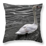 Silver Swan Throw Pillow