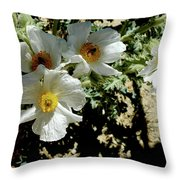 Silver Terrace Virginia City Nevada Flowers Throw Pillow