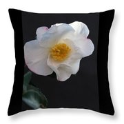 Silver Waves Camellia Throw Pillow