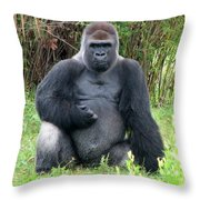 Silverback Gorilla 2 Throw Pillow