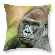 Silverback Throw Pillow