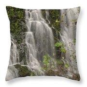 Silverdale Falls 2 Throw Pillow
