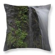 Silverdale Falls Throw Pillow