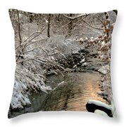 Silvered Shores Throw Pillow