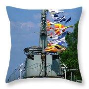 Silversides Flags Throw Pillow
