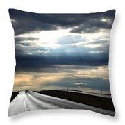 Silverway Throw Pillow