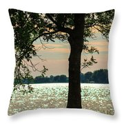 Silvery Sunset Throw Pillow