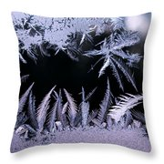 Silvery Window Fronds Throw Pillow