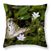 Simmons Park Peacock Throw Pillow