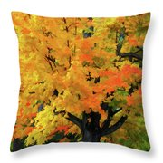 Simple And Elegant Throw Pillow