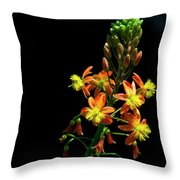 Simple Beauty Iv Throw Pillow