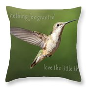 Simple Country Truths Hummingbird Throw Pillow