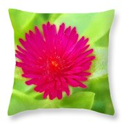 Simple Magenta In A Garden Of Green Throw Pillow