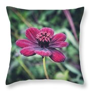 Simple Perfection  Throw Pillow
