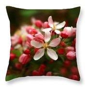 Simple Savory Spring Throw Pillow