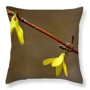 Simple Yellow Throw Pillow
