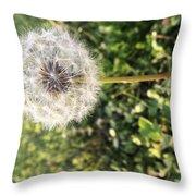 Simplicity #1  Throw Pillow