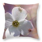 Simplicity A Dogwood Blossom Throw Pillow