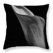 Simplicity In Black And White Throw Pillow