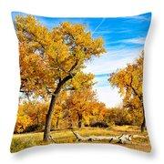 Simply Autumn Throw Pillow