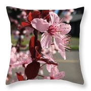 Simply Blooming  Throw Pillow