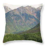 Simply Colorado 2 Throw Pillow
