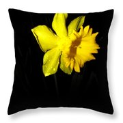 Simply Daffodil Throw Pillow