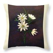 Simply Daisies Throw Pillow