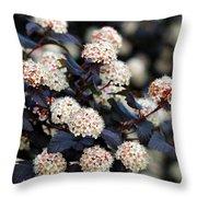 Summer Wine Ninebark Blossom Throw Pillow