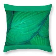 Simply Hasta Throw Pillow