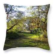 Simply Magnificent Throw Pillow