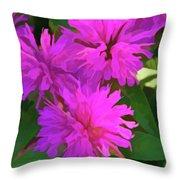 Simply Soft Pink Petals Throw Pillow