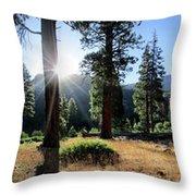 Simpson Meadow - Sierra Throw Pillow