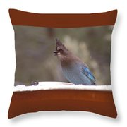Singing Jay Throw Pillow