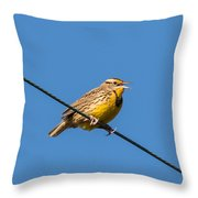 Singing On The Wire Throw Pillow