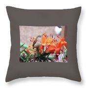 Singing Wren In The Lilies Throw Pillow